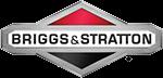 Briggs & Stratton Agent